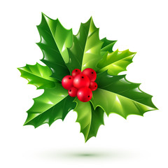Realistic red holly berries and green leaves. Vector Christmas ornament isolated on white background.