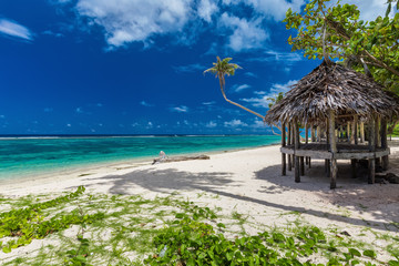 Foto auf Leinwand Tropical strand Tropical vibrant beach on Samoa Island with palm tree and fale