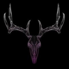 Wireframe deer skull, head abstract vector illustration