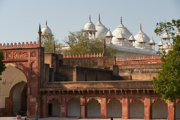 Fototapete - Red Fort  located in Agra, India.