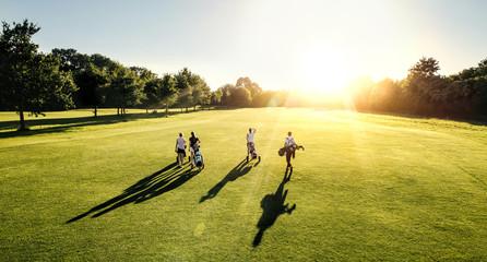 4er Golf flight