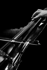 The bow on the strings of the cello in black and white