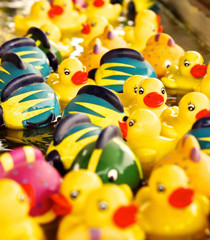 Bright Yellow Rubber Duckies and Color Fish Floating in a Stream of Water in a Carnival Game Booth