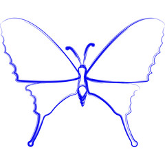 Butterfly. Hand-drawn image on white background