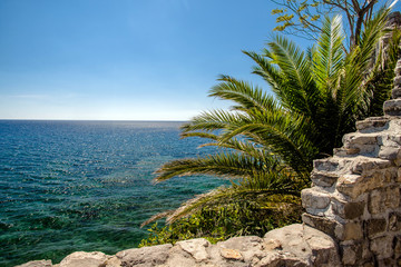 landscape with a palm tree and a fortification on the Adriatic Sea