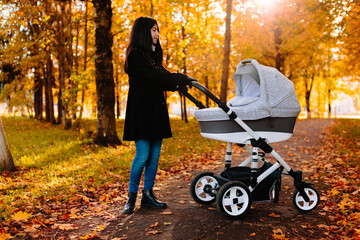 Young beautiful happy mom with a stroller in autumn park