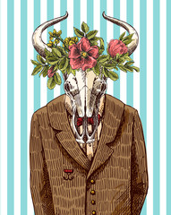 Skull bull in jacket.