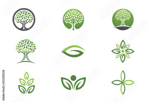 Quot Tree Leaf Vector Logo Design Eco Friendly Concept