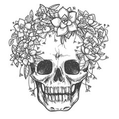 Vector drawing dead skull with rose flowers sketch isolated on white background