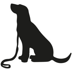 Labrador retriever. Vector black silhouette on a white background. Illustration of dog breeds