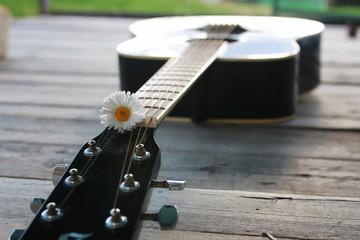 guitar string daisy