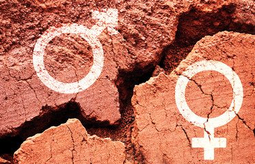 Gender symbols on earth background with a big crack, gender gap concept