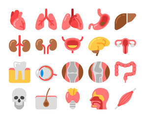 flat style Medical Icons with human organs