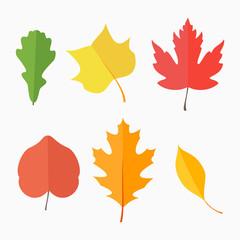 Set of autumn leaves isolated on white background. Flat style vector illustration.