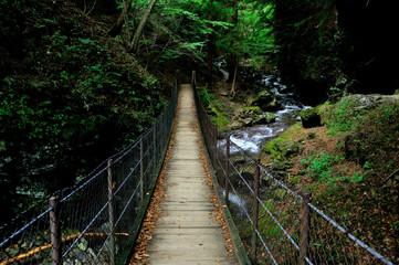 栃木県那須郡那須町 竜化の滝遊歩道