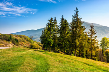 classic Carpathian mountain  landscape in early autumn