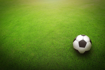 Soccer ball playing