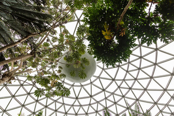 Roof of Geodesic Dome