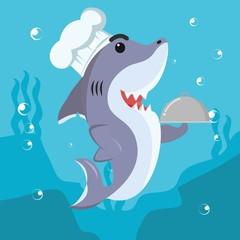 shark cheff vector illustration design