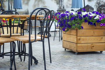 Interior street cafe with flowers in wooden pot