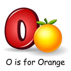 Fruit alphabet: O is for Orange