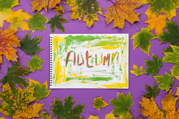 Word fall in an album in the frame of leaves