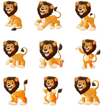 Lion cartoon set collection