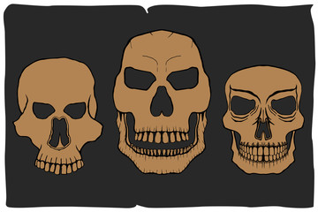 Vector Skull Images