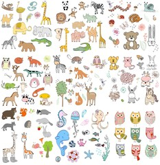 big set of wild, domestic, marine animals and owls. Hand drawn illustration.