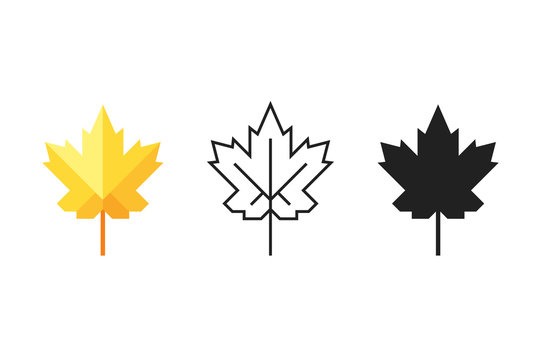 Set Of Maple Leaf Icons. Silhouette, Colorful Flat And Outline One With Editable Stroke. Stock Vector