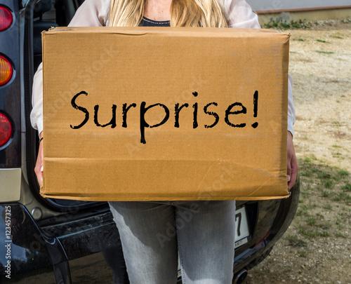 frau bringt paket zur post stockfotos und lizenzfreie bilder auf bild 123457325. Black Bedroom Furniture Sets. Home Design Ideas