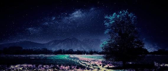 Moonlight on desert valley and tree