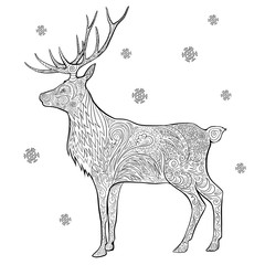 Hand drawn vector stock illustration of Christmas deer in doodle style for anti stress adult coloring book.