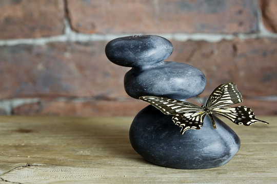 Zen and Butterfly