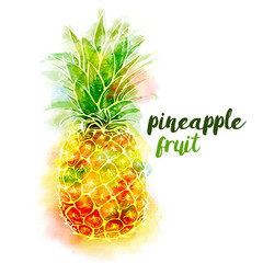 Bright color pineapple fruit and lettering on white background with watercolor stains. Vector illustration.