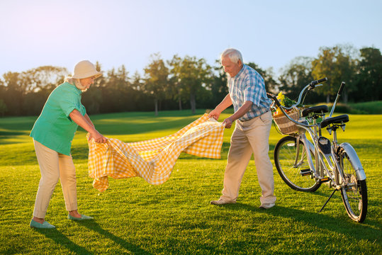 Senior couple on the meadow. Tandem bike with basket. Have a seat here. Picnic in august.
