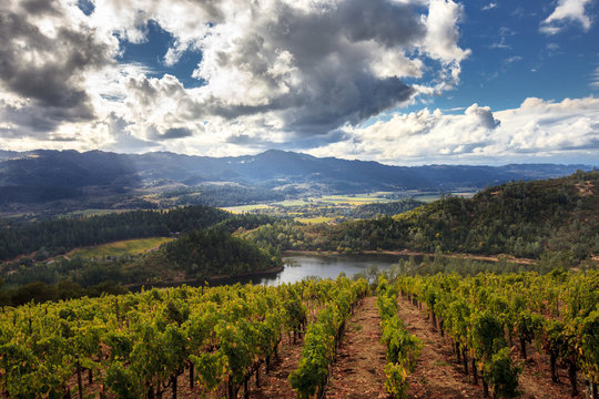 Panorama of Howell Mountain, Napa Valley wine country in autumn. Sun and clouds at a Napa, California vineyard with mountains, valleys and lake.