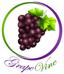 Grape vine on round label