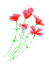 Illustration - watercolor flowers,