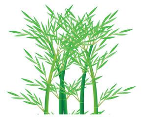 bamboo plant vector design