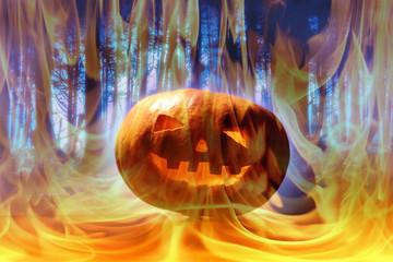 pumpkin, halloween background
