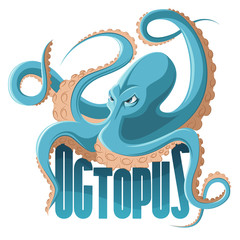 Colored cartoon octopus