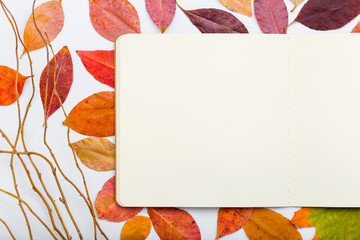 Open notepad with autumn leaves. Top view