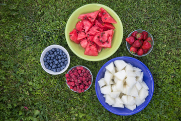 Different kinds of fruit and berries