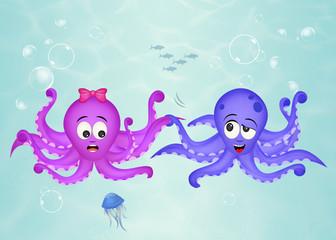 octopus couple in the ocean