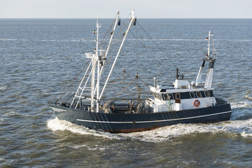 Fishing boat on Wadden Sea  .
