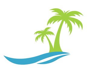 water beach coconut palm trees
