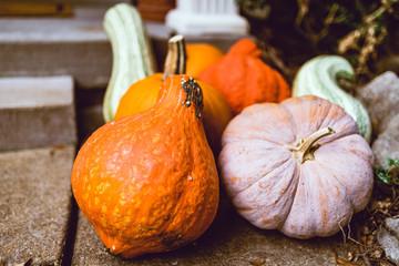 Pumpkin and Squash Front Door Decorations
