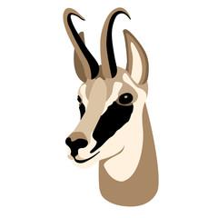 chamois vector animal head face style flat