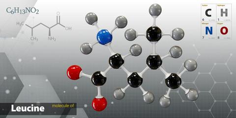 Illustration of Lactose Leucine isolated gray background